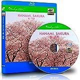 花見ができる4Kカメラ動画・映像【Healing Blue LヒーリングブルーL】 桜・花見〈動画約40分〉 [Blu-ray]