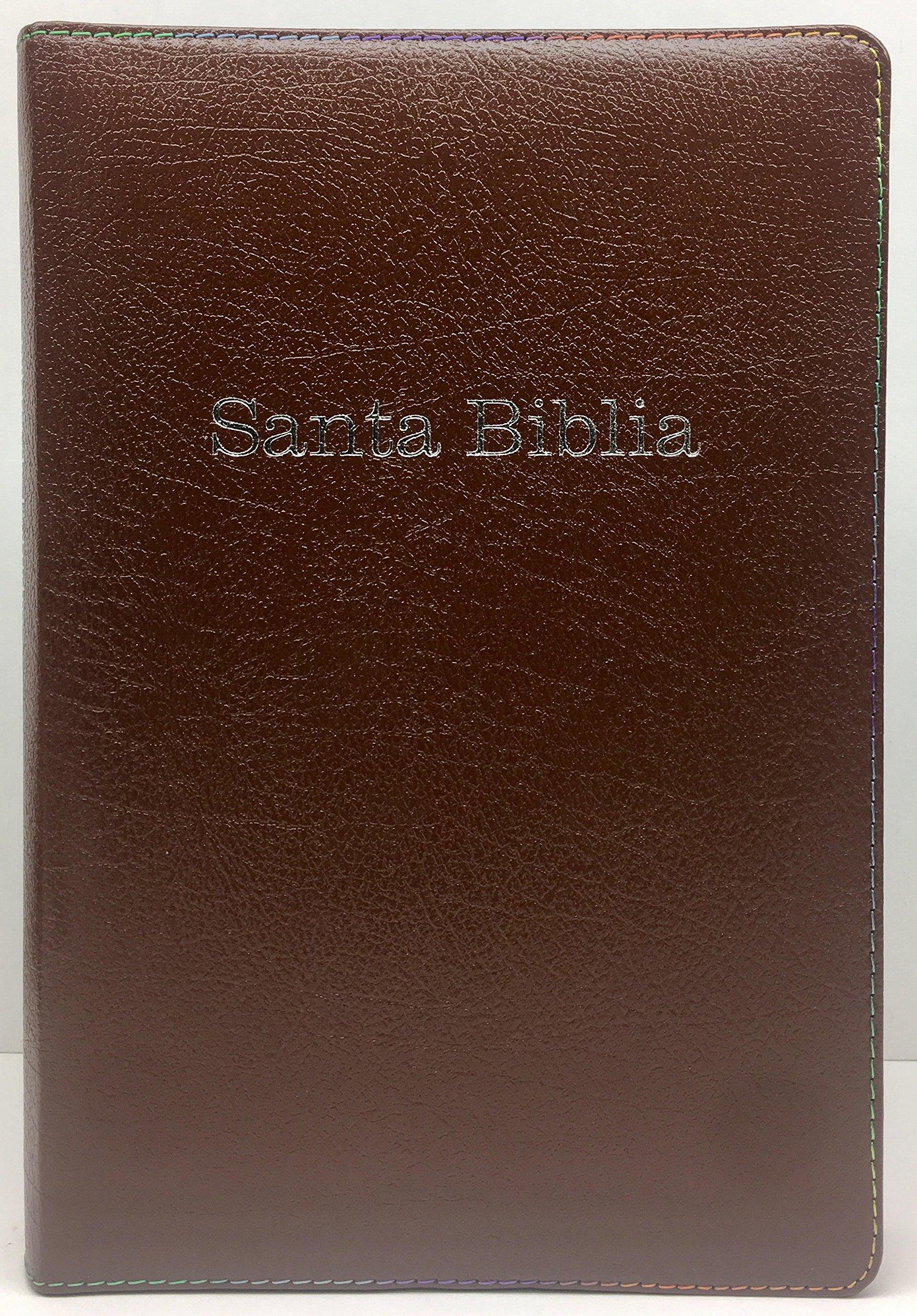 RVR 1960 Biblia de Estudio Arco Iris, chocolate, piel ...