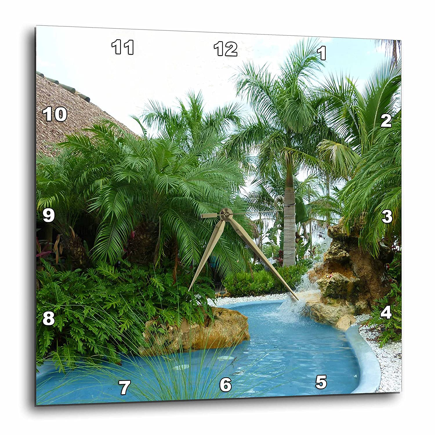 3dRose dpp/_26492/_1 Tropical Oasis-Wall Clock 10 by 10-Inch