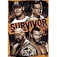WWE: Survivor Series 2013: Season 4