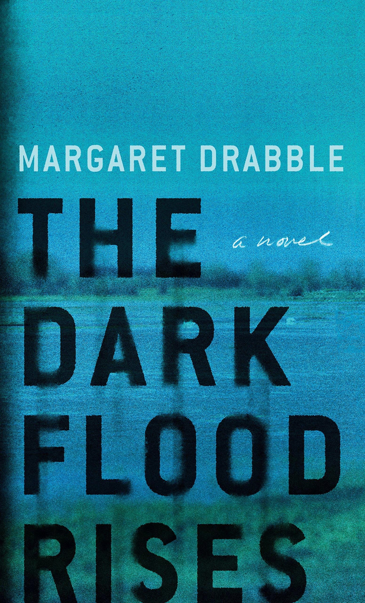 Download The Dark Flood Rises (Thorndike Press Large Print Core Series) pdf epub