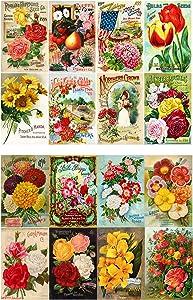 "Decoupage Paper Pack (10sheets A4 / 8""x12"") Flowers Roses Garden Wildflowers FLONZ Vintage Paper"