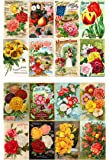 "Decoupage Paper Pack (10sheets A4 / 8""x12"") Flowers Roses Garden Wildflowers FLONZ Vintage Paper"