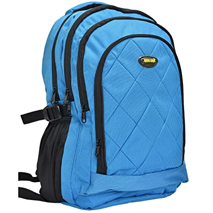 bfc2a398ca1c New-Era Polyester 30 Ltr Blue School Bag  school bags for boys ...