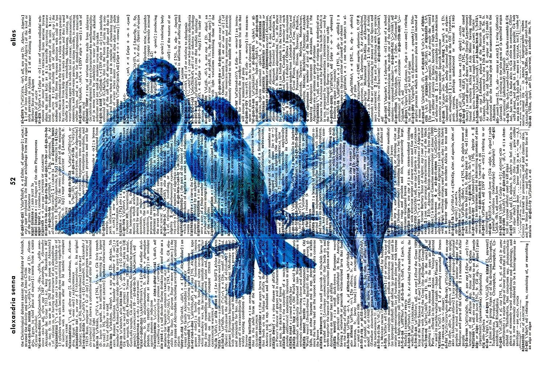 BLUE BIRDS PRINT - VICTORIAN ART PRINT - VINTAGE ART - Illustration - Picture - Vintage Dictionary Art Print - Wall Hanging - Home Décor - Housewares -Book Print - Wall Art 550Df Vintage Reflectionz