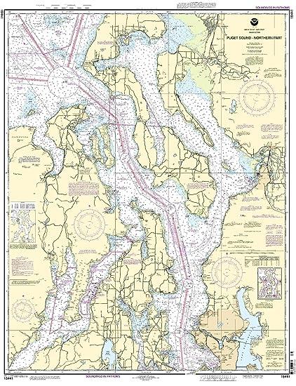 Amazon.com: 18441 -- Puget Sound – Parte del Norte: Sports ...