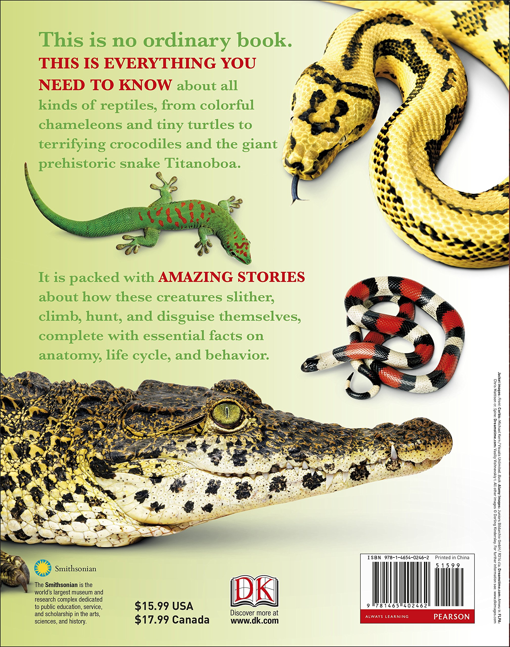 Everything You Need to Know About Snakes: DK: 9781465402462: Amazon ...