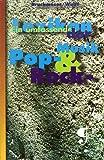 Lexikon der Pop- & Rock-Musik. Ein umfassendes Lexikon der Pop- & Rock-Musik. Basis-Informationen in über 2000 Schubladen