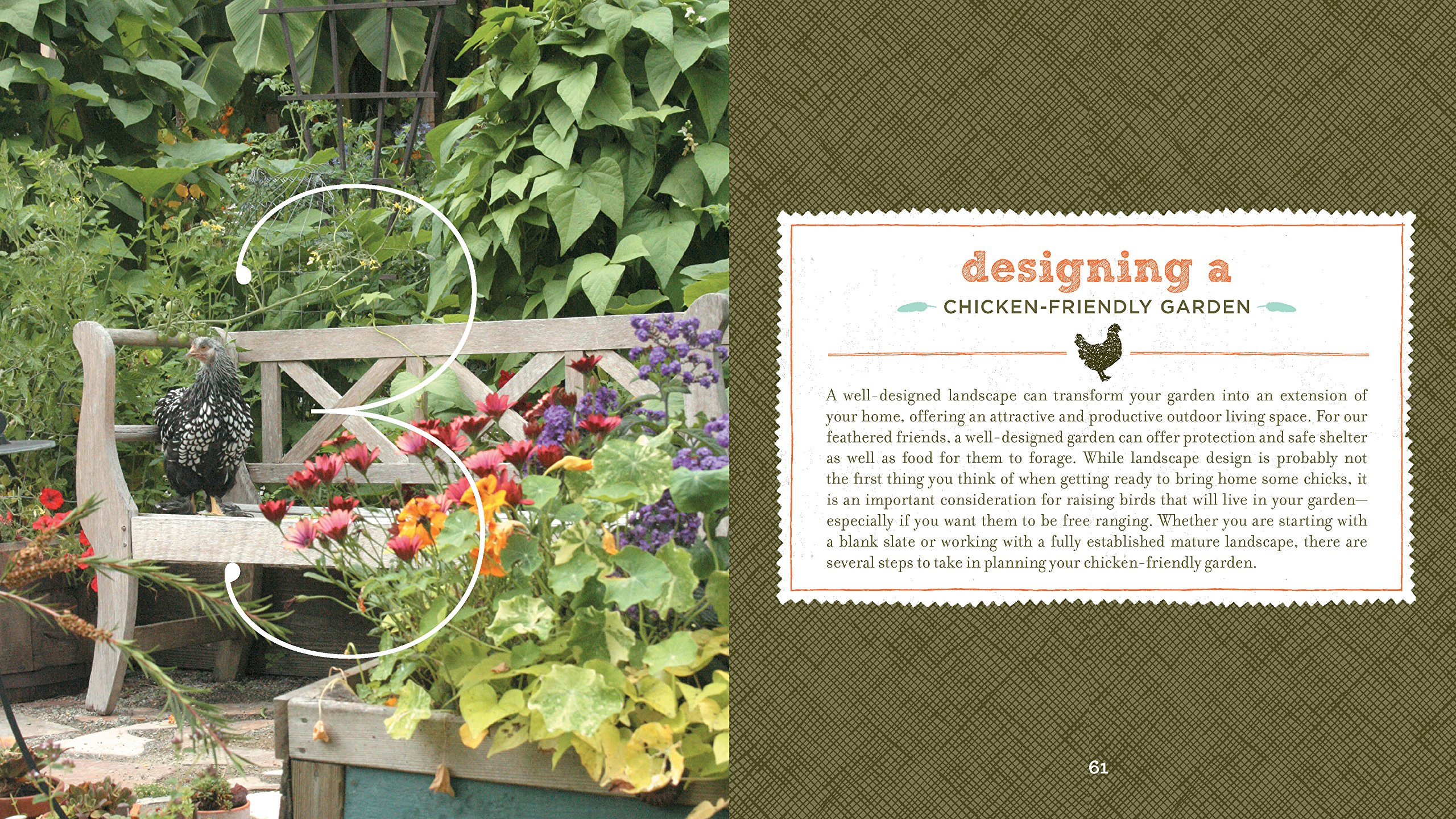 How to create an unusual garden without unnecessary trouble (tips in pictures)