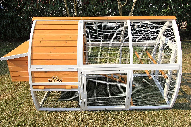 Jaula con caseta de madera de Pets Imperial®, para gallinas o conejos: Amazon.es: Productos para mascotas
