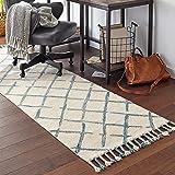 """Amazon Brand – Stone & Beam Tassled Criss-Cross Wool Runner Rug, 2' 6"""" x 8', Blue and White"""
