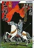 大判 三国志 12 (希望コミックス)