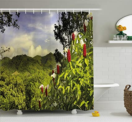 Astounding Ambesonne Forest Shower Curtain Rural Scenery Costa Rica Countryside Greenery Tropic Accents Botanical Fabric Bathroom Decor Set With Hooks 70 Download Free Architecture Designs Rallybritishbridgeorg