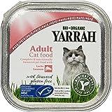 Yarrah Pate Lachs Saumon mit Seaweed 100g Bio Katzenfutter, 16er Pack (16 x 0.1 kg)