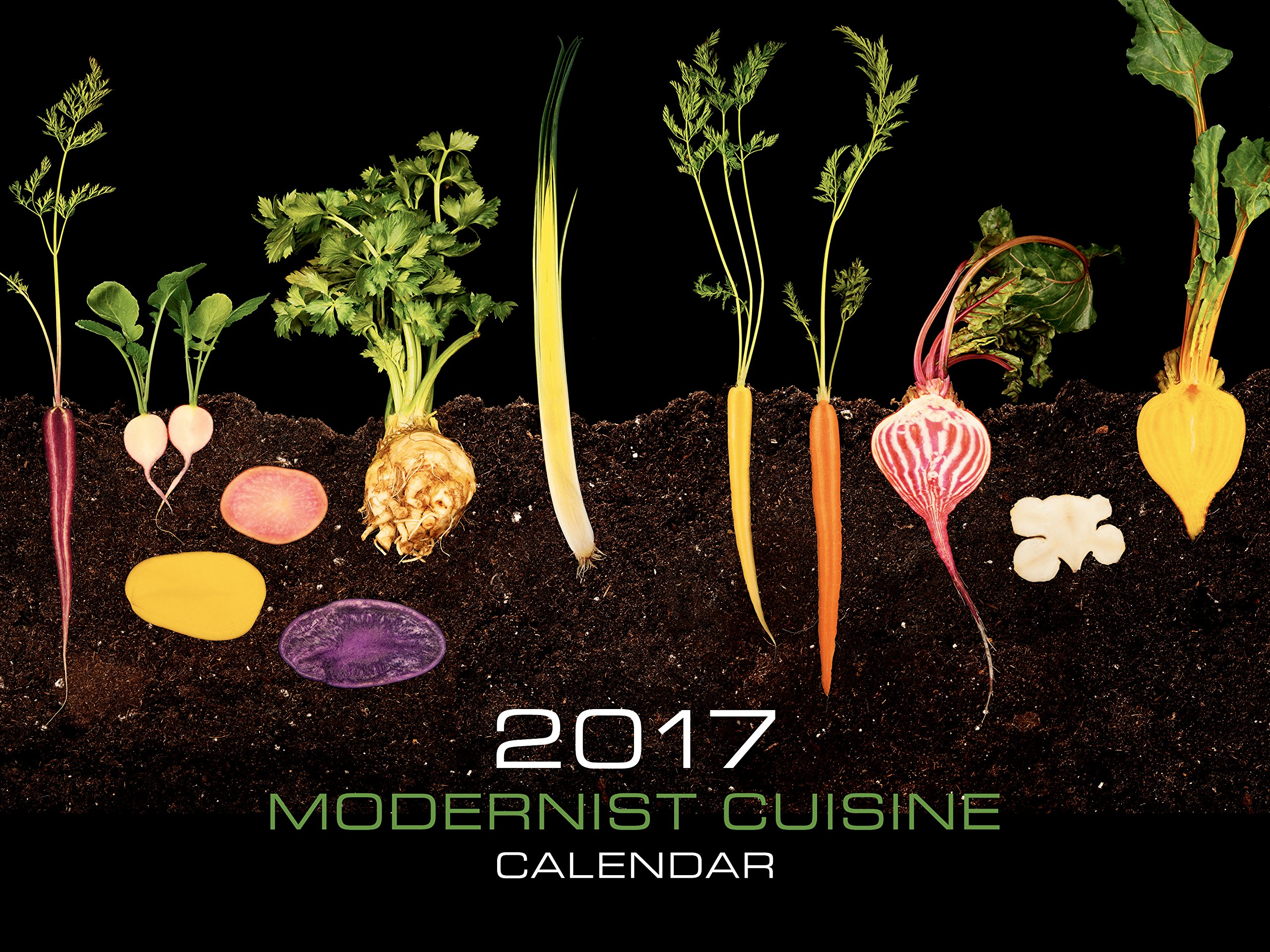 Exceptionnel Modernist Cuisine 2017 Wall Calendar: Nathan Myhrvold: 9780982761076:  Amazon.com: Books