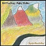 Spiderbeetlebee (Vinyl)