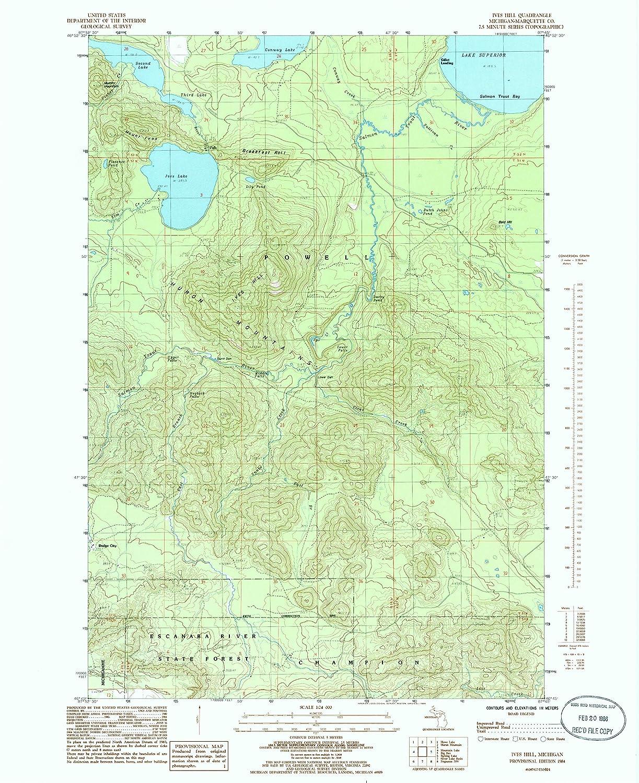 Amazon com : YellowMaps Ives Hill MI topo map, 1:24000 Scale, 7 5 X