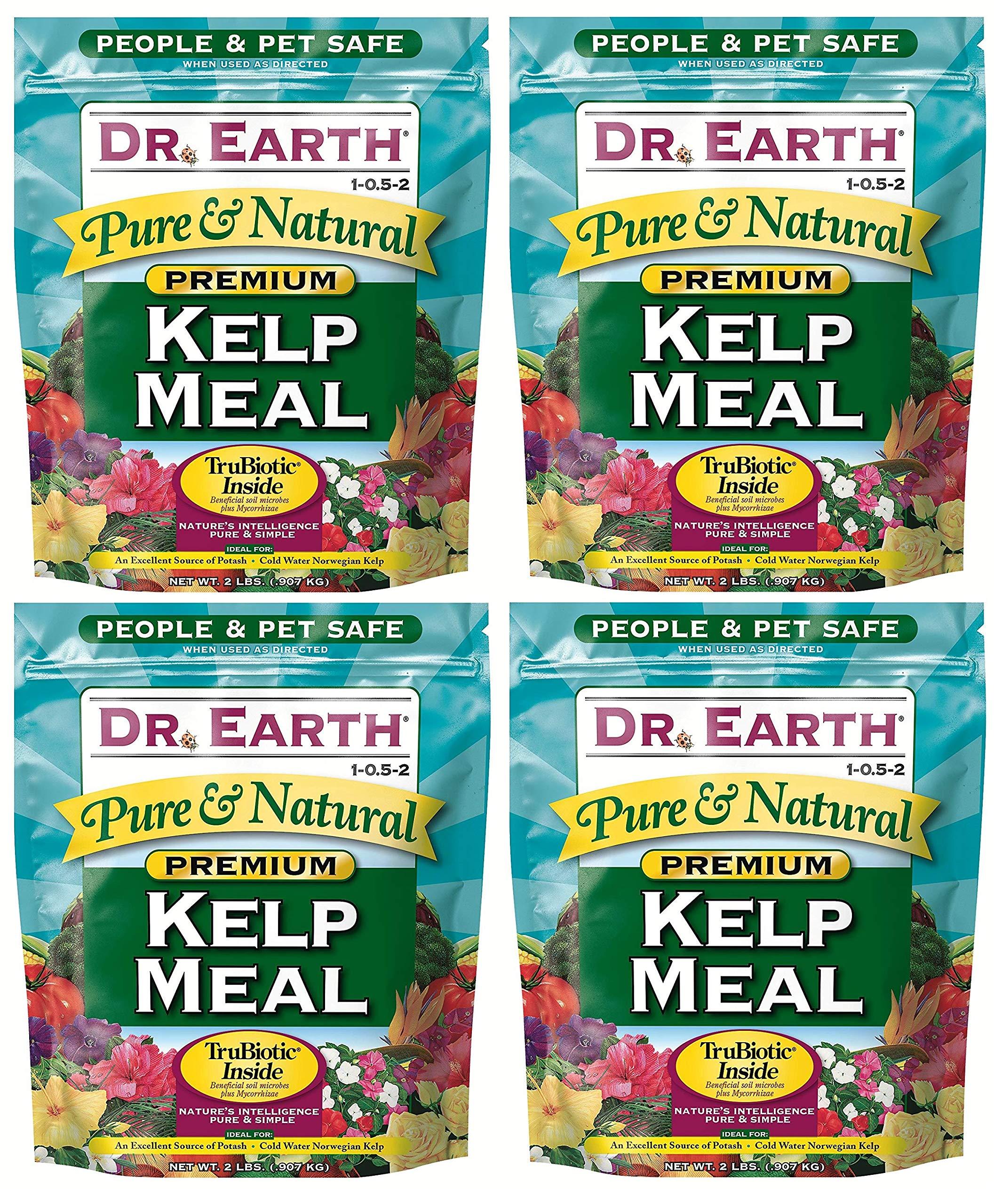 Dr. Earth 725 Kelp Meal 1-0. 5-2 2.5 Boxed, 2-Pound (Вundlе оf Fоur)