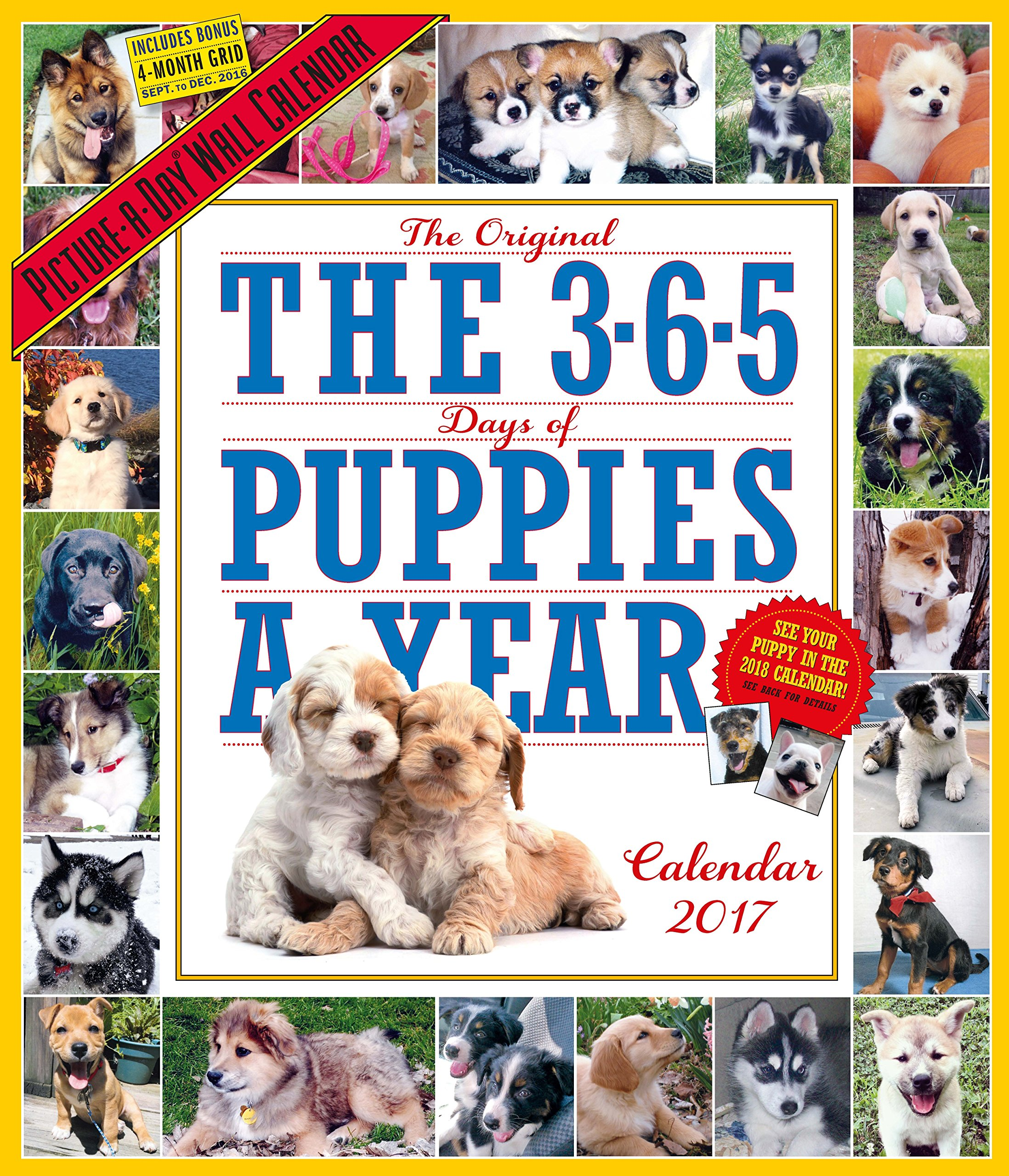Puppies Year Picture Day Calendar product image