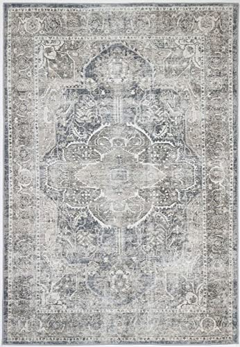 The Rug Collective Distressed Vintage Kendra Ash Area Rug Perfect - the best living room rug for the money