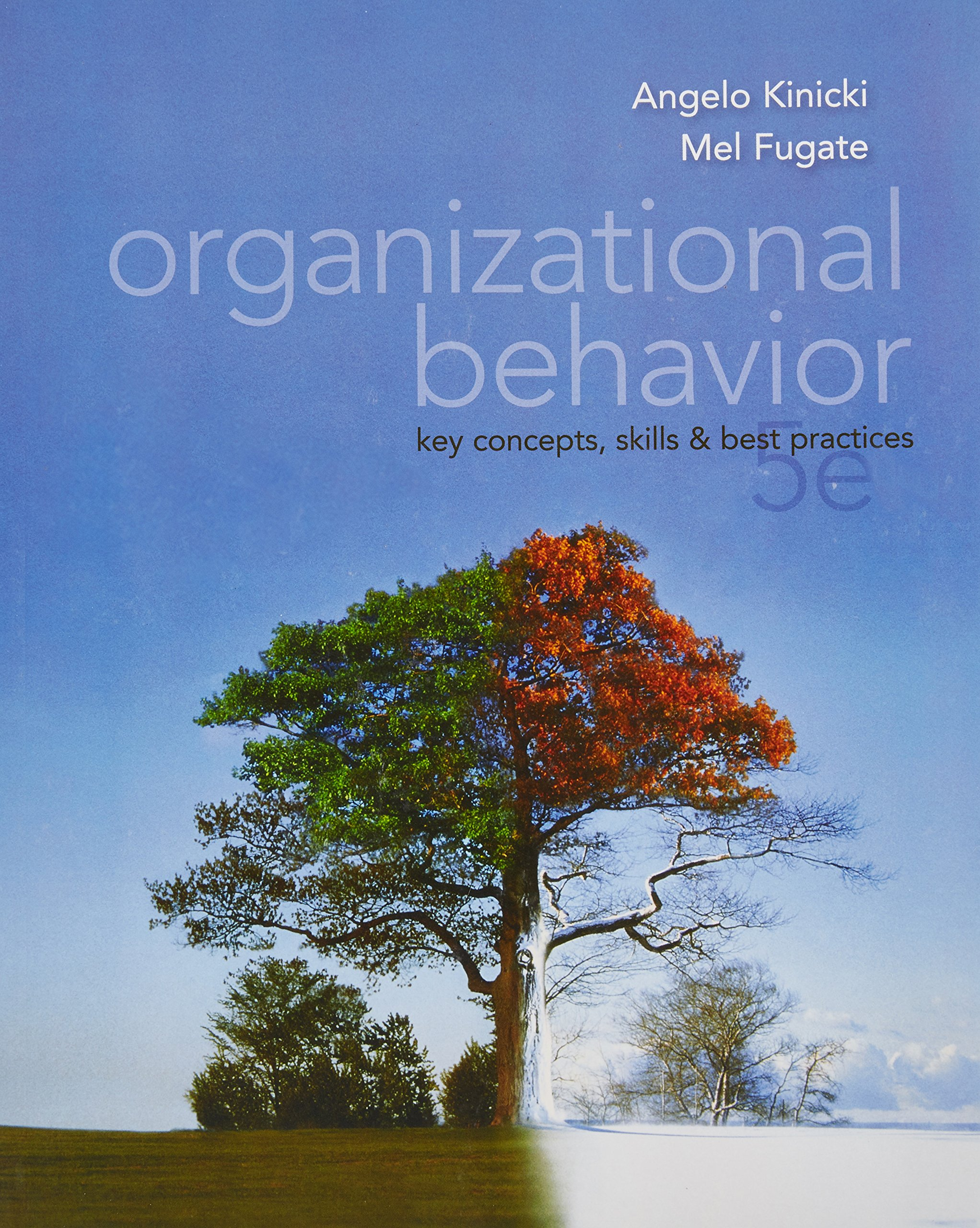 organizational behavior key concepts skills and best practices organizational behavior key concepts skills and best practices angelo kinicki 9780071315685 books ca