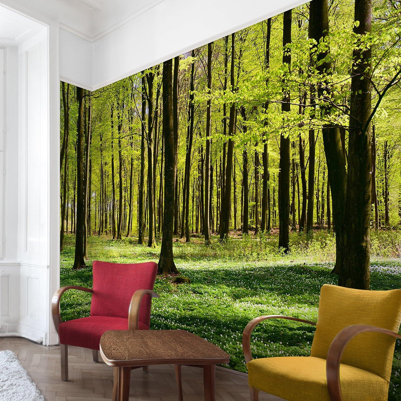Glade 320x480 cm Vliestapete – Top Forest Wallpapers – Wandbild Landschaft Format Tapete Wand Wandbild xxl Foto Funktion 3D Tapete wall-art Tapete Wandmalereien Schlafzimmer Wohnzimmer, Dimension HxB  320 cm x 480 cm; Motiv  Glade