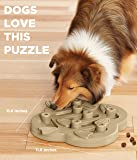 Outward Hound Nina Ottosson Puzzle Toy for Dogs