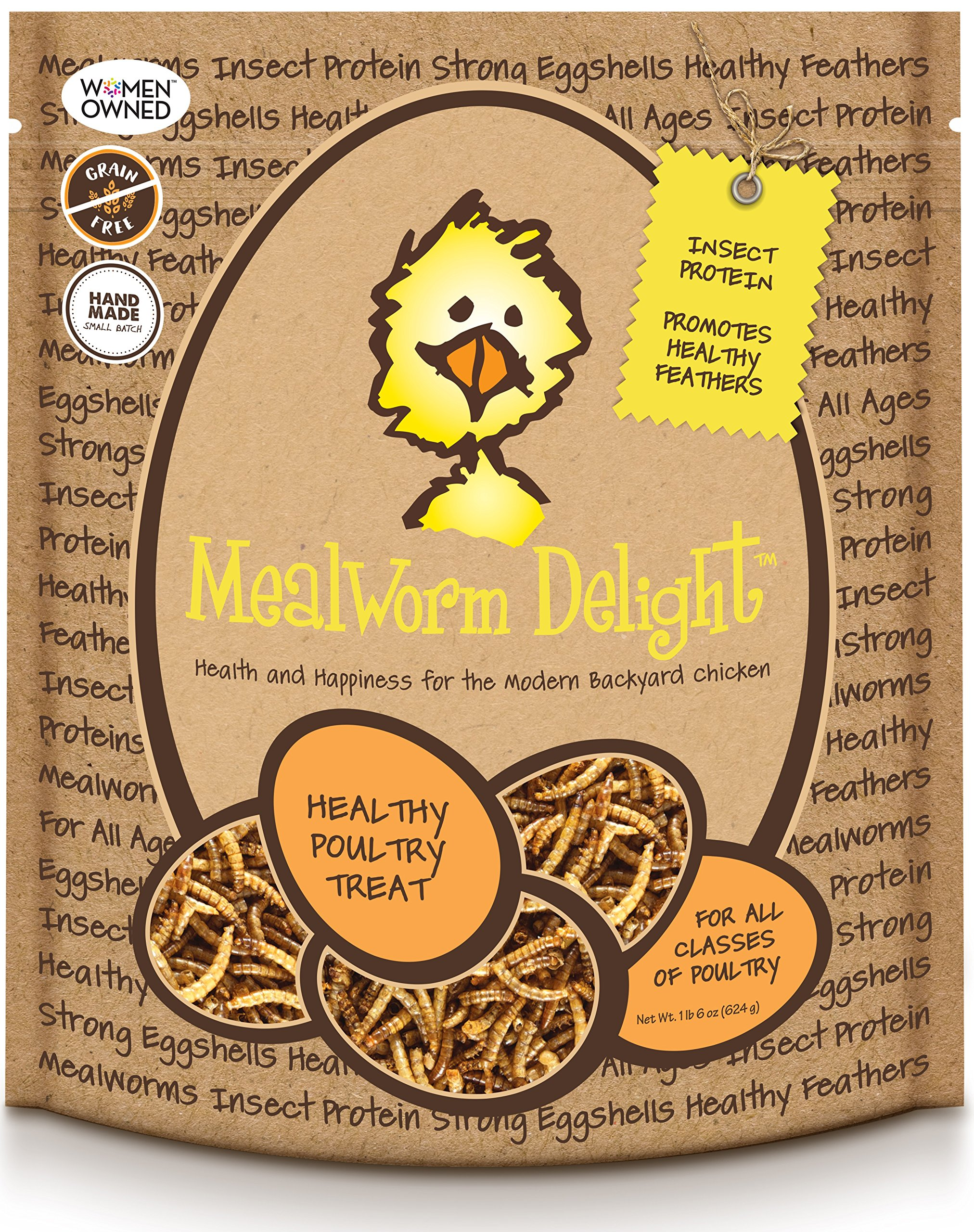 Treats For Chickens Mealworm Delight Treat, 1-Pound, 6 Oz by Treats For Chickens