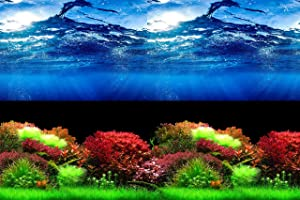 Hitop Double Sides Aquarium Background Picture,3 Different pcs with Total 6 Options for Fish Tank