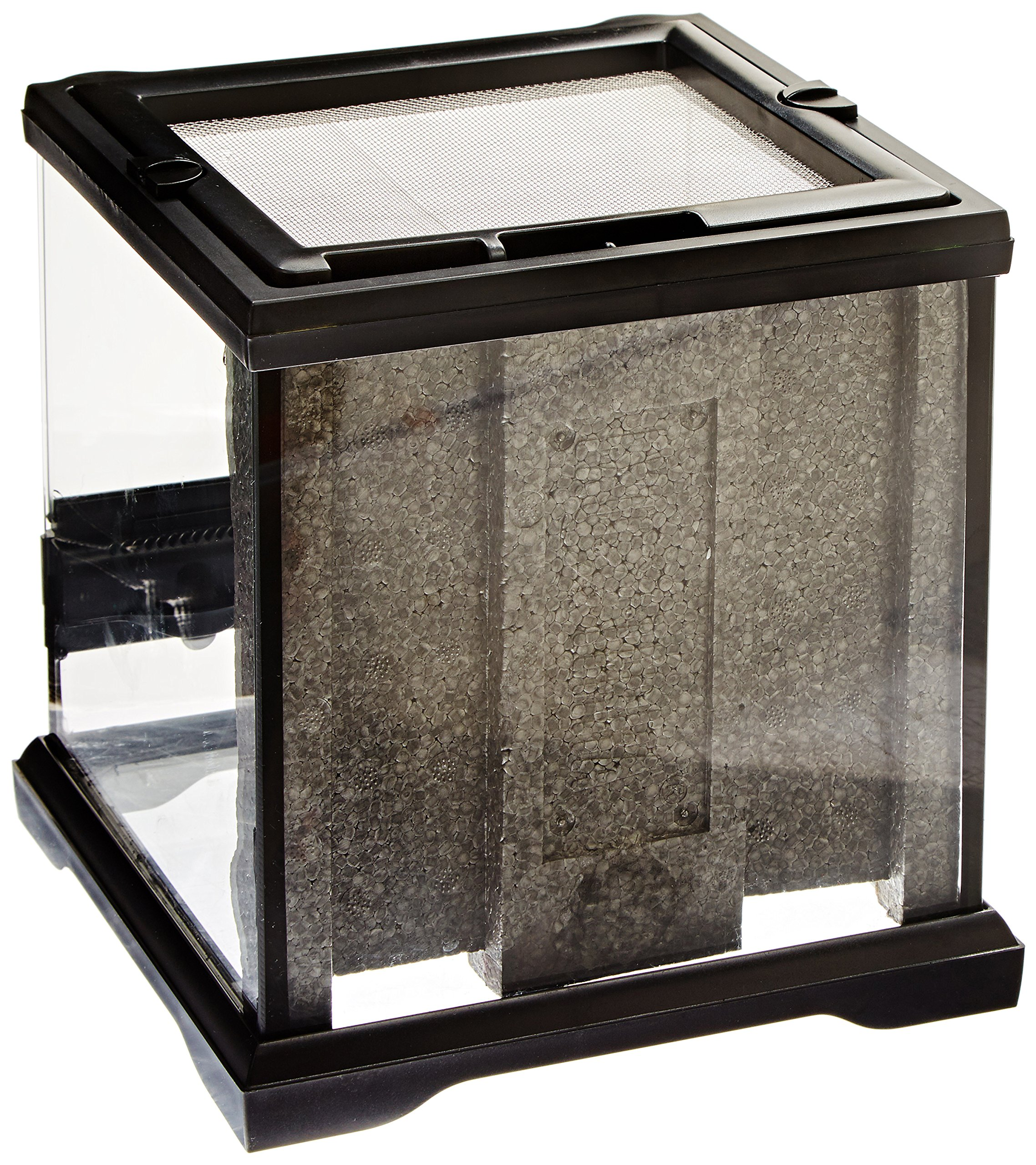 Exo Terra Nano Glass Terrarium Reptile Habitat - 8 x 8 x 8 Inches by Exo Terra