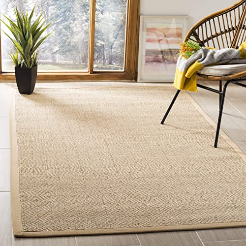 Safavieh Natural Fiber Collection NF151B Natural and Beige Area Rug, 3 x 5