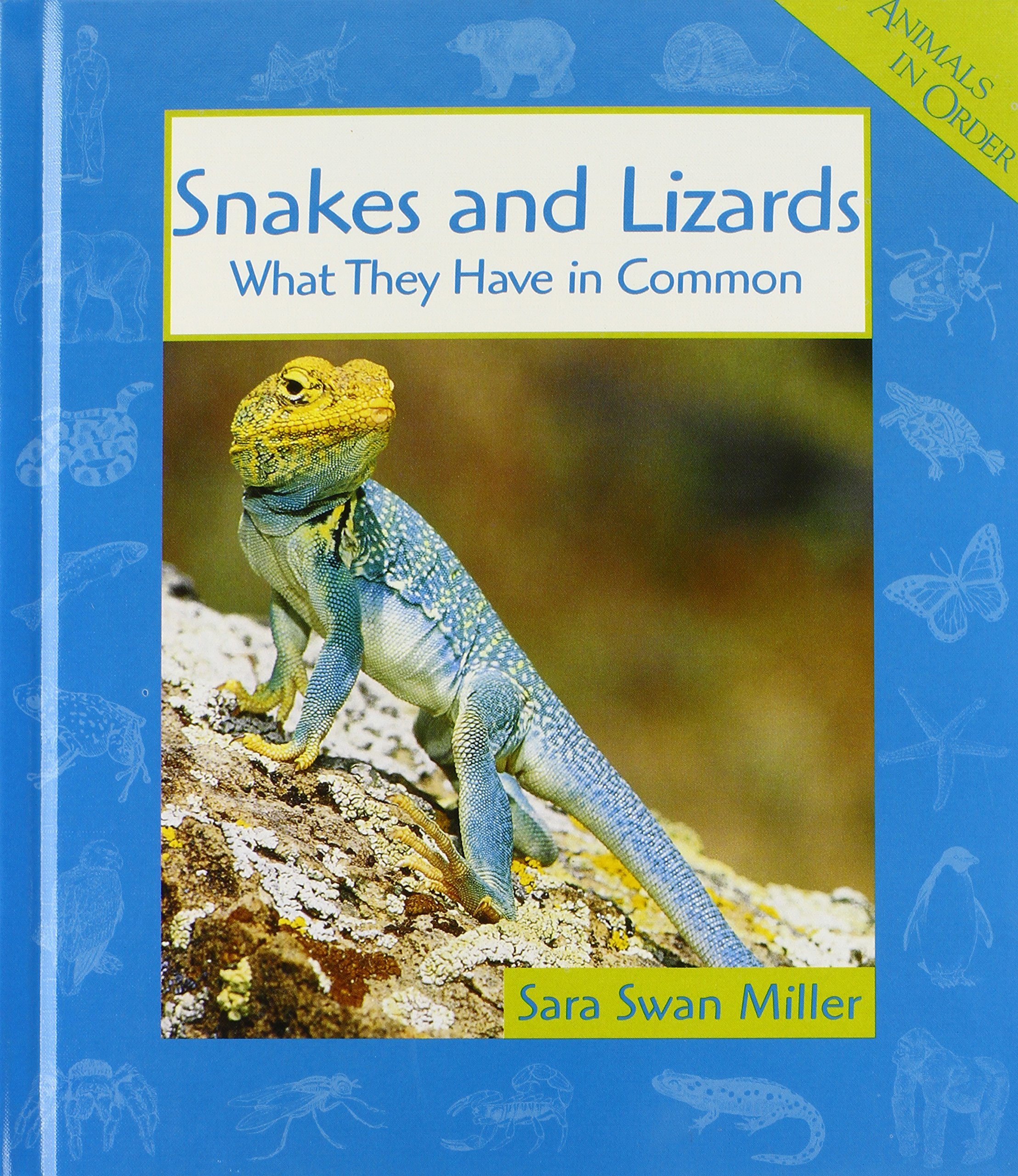 Snakes and Lizards: What They Have in Common (Animals in Order)