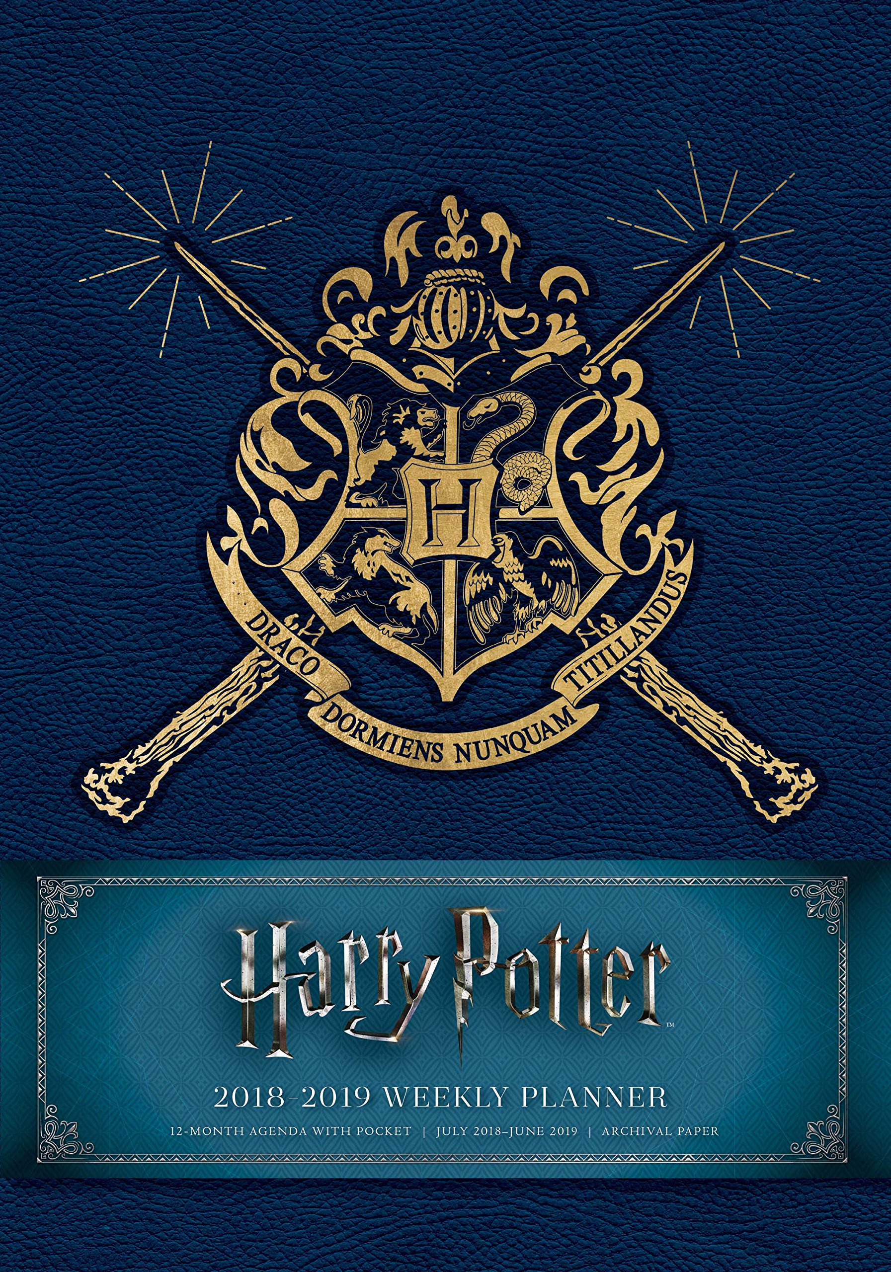 Harry Potter 2019 Weekly Planner: UK Edition: 9781683835738 ...