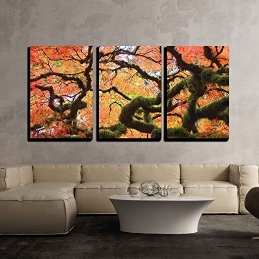 Amazon Com Wall26 3 Piece Canvas Wall Art Gnarly Japanese Maple Tree Modern Home Art Stretched And Framed Ready To Hang 24 X36 X3 Panels Posters Prints
