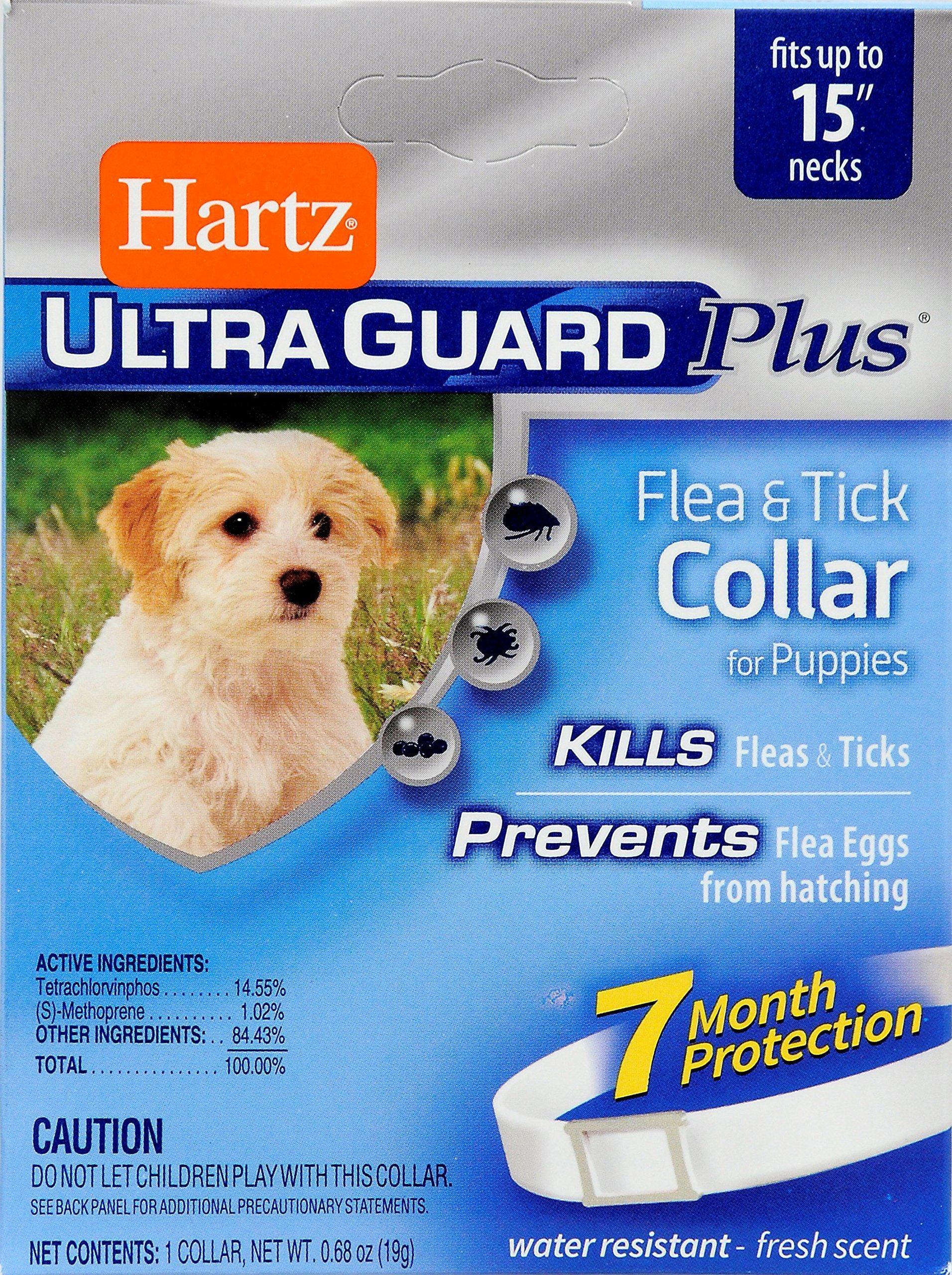 Hartz 3 In 1 Control Flea & Tick Collar For Puppies 1-Pack