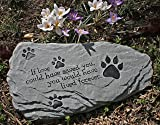 Pet Memorial Stone If Love Could Have Saved You