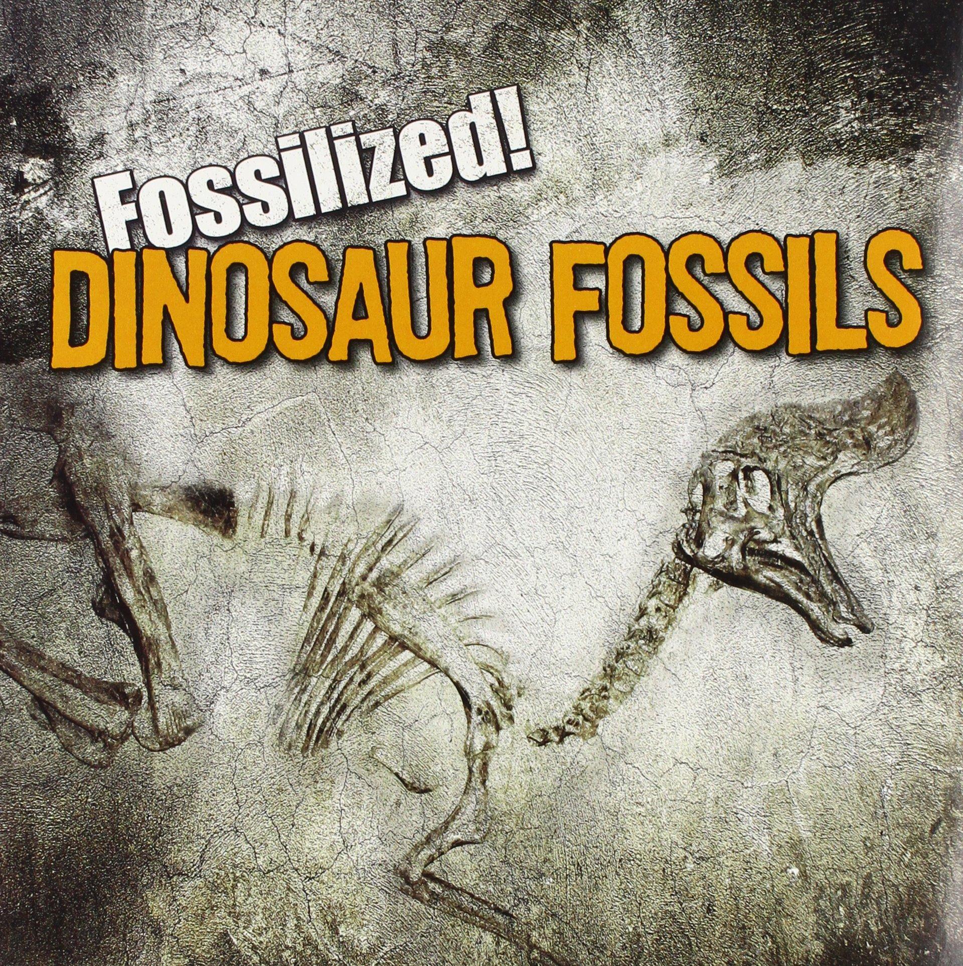 Dinosaur Fossils (Fossilized!)