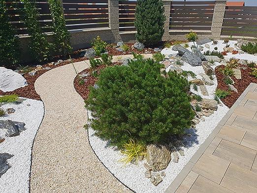 AMISPOL® Flexible Borde de Jardín, Bordillo Escondido 125/4 mm, Longitud 12 m: Amazon.es: Jardín