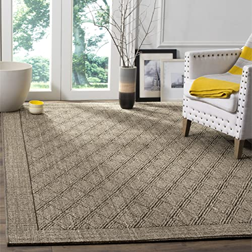 Safavieh Palm Beach Collection PAB351D Silver Sisal Jute Area Rug 3 x 5