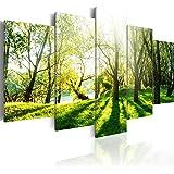 murando – Impression sur toile – 200x100 cm cm – 5 pieces - Image sur toile – Images – Photo – Tableau - motif moderne - Décoration - tendu sur chassis - naturee Foret Foret parc c-B-0030-b-n