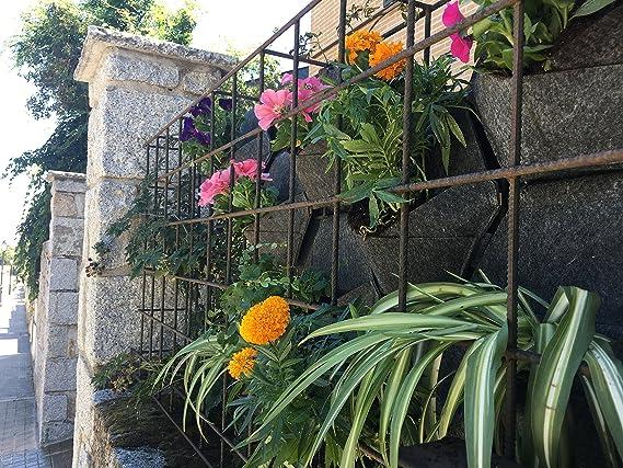 Jardín vertical. Saco Orgánico Mh (30x30x15cm) + Manual para ...