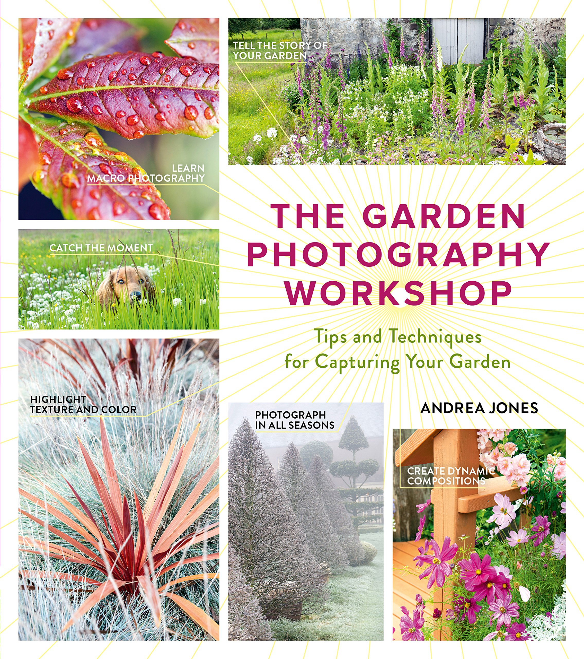 Read Online The Garden Photography Workshop: Expert Tips and Techniques for Capturing the Essence of Your Garden PDF