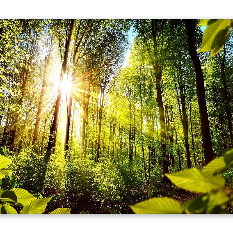 Murando - Fototapete Waldlandschaft 400x280 cm - Vlies Tapete - Moderne Wanddeko - Design Tapete - Wandtapete - Wand Dekoration - Wald Landschaft grün b-B-0248-a-a