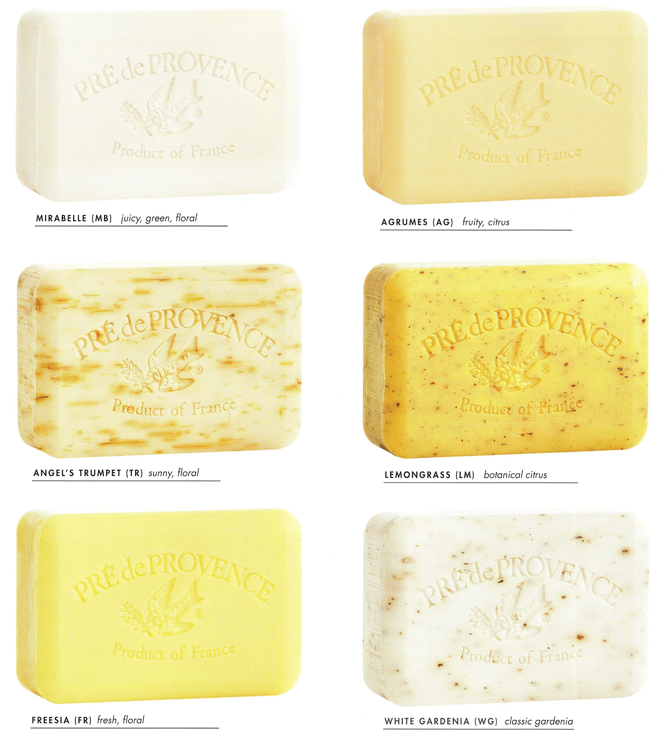 MIXED SCENTS: Case of 12 bars Pre de Provence 250g - Customize with your Choice of Scents by Pre de Provence (Image #1)