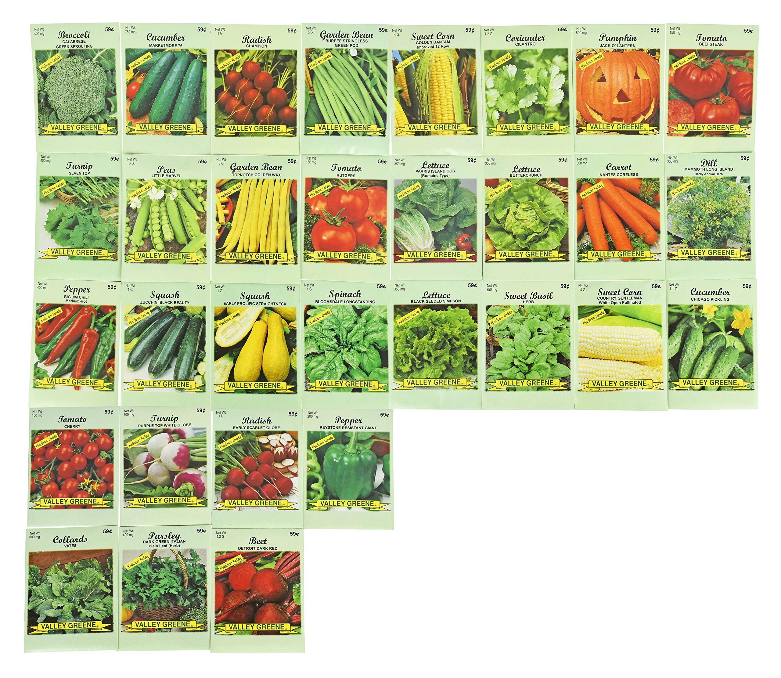 Black Duck Brand Set of 31 Vegetable Seeds (31 Variety Deluxe Vegatable Garden) 100% Non-GMO Heirloom