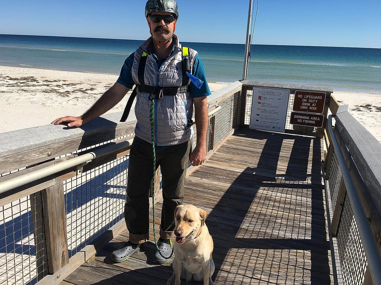 Hands Free Dog Harness Arnés Manos Libres para Perro: Amazon.es ...