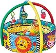 Playgro 0184007 Ball Activity Nest for Baby Infant Toddler Children