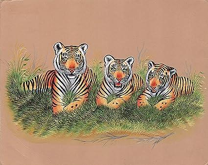 c823807093f Amazon.com  Indian Miniature Painting Royal Bengal Tiger Handmade ...