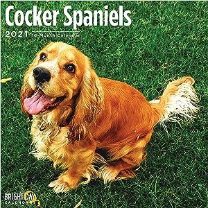 2021 Cocker Spaniels Wall Calendar by Bright Day, 12 x 12 Inch, Cute Dog Puppy