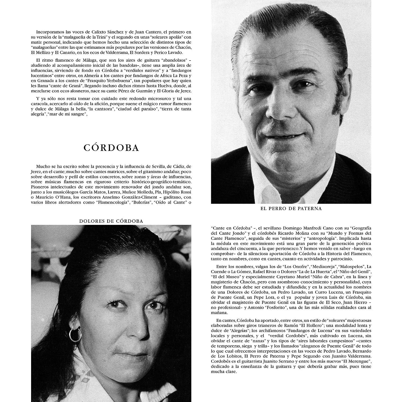 Nueva Antología Flamenca : Varios: Amazon.es: Música